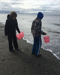 Cook Inlet Beach